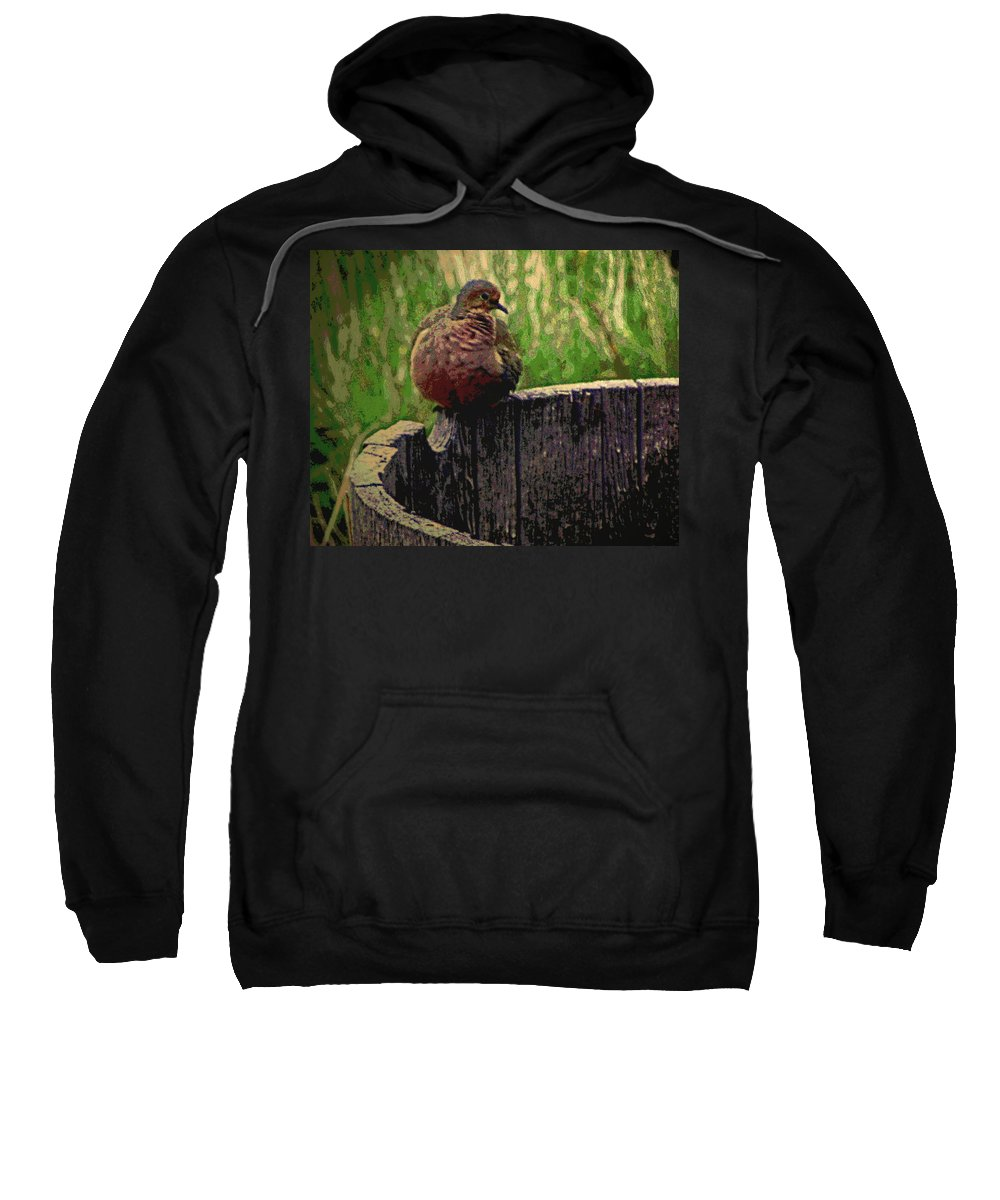 Abstract Sweatshirt featuring the photograph Mourning Dove by Lenore Senior