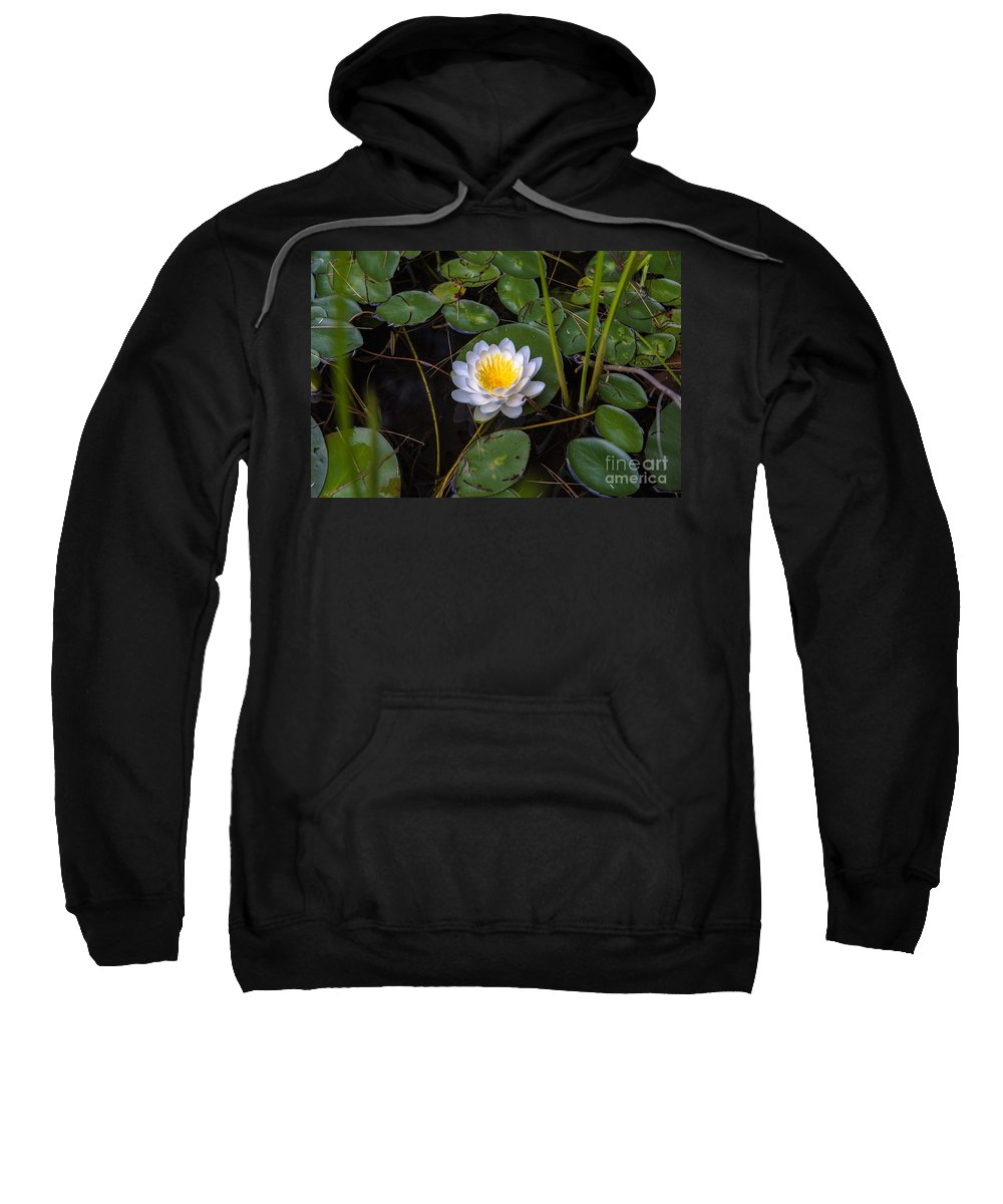 Water Lily Sweatshirt featuring the photograph Mudd Pond Water Lily by Sherman Perry