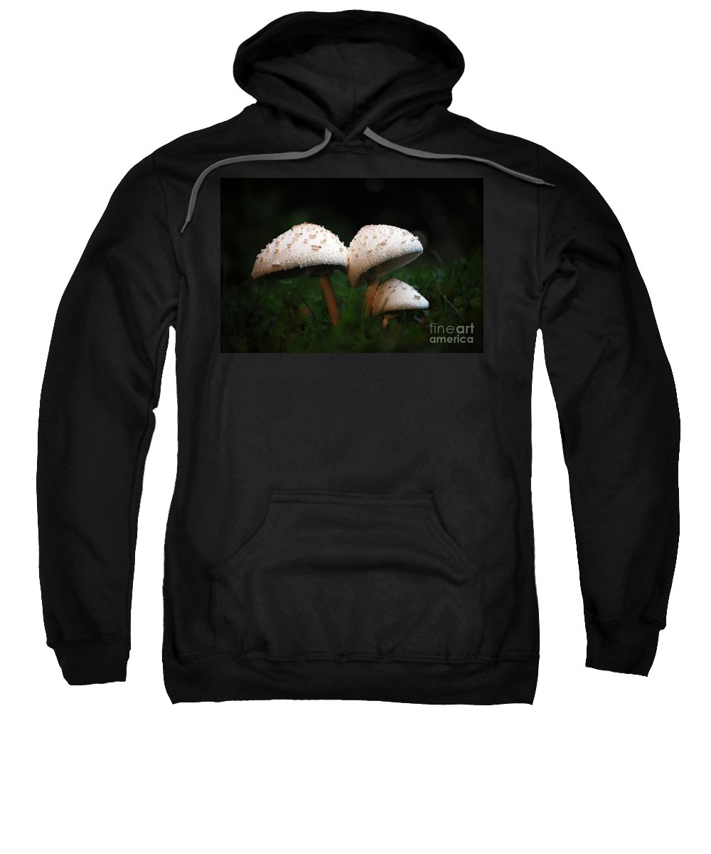 Mushrooms Sweatshirt featuring the photograph Mushrooms In The Morning by Robert Meanor