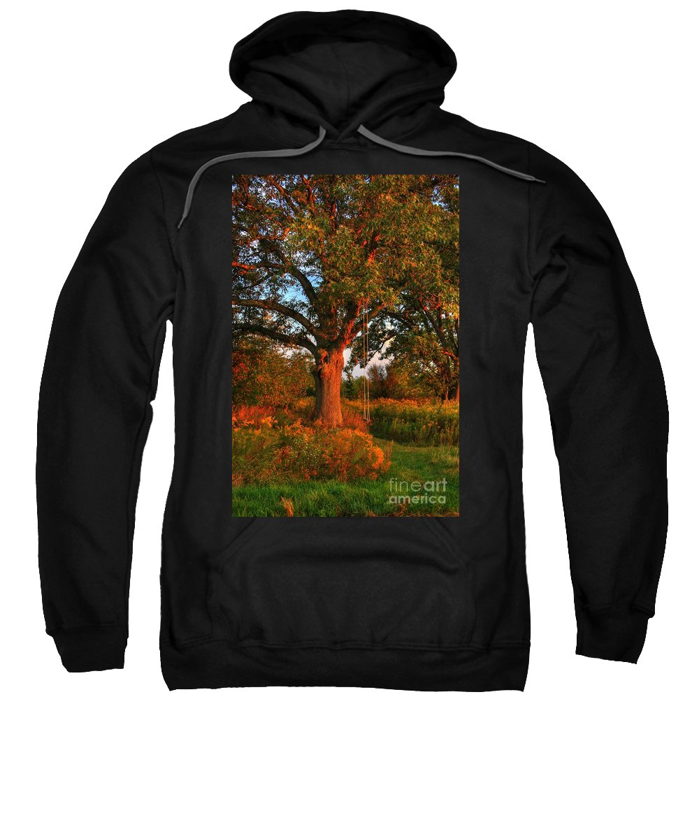 Swing Sweatshirt featuring the photograph My Child Hood Swing by Robert Pearson