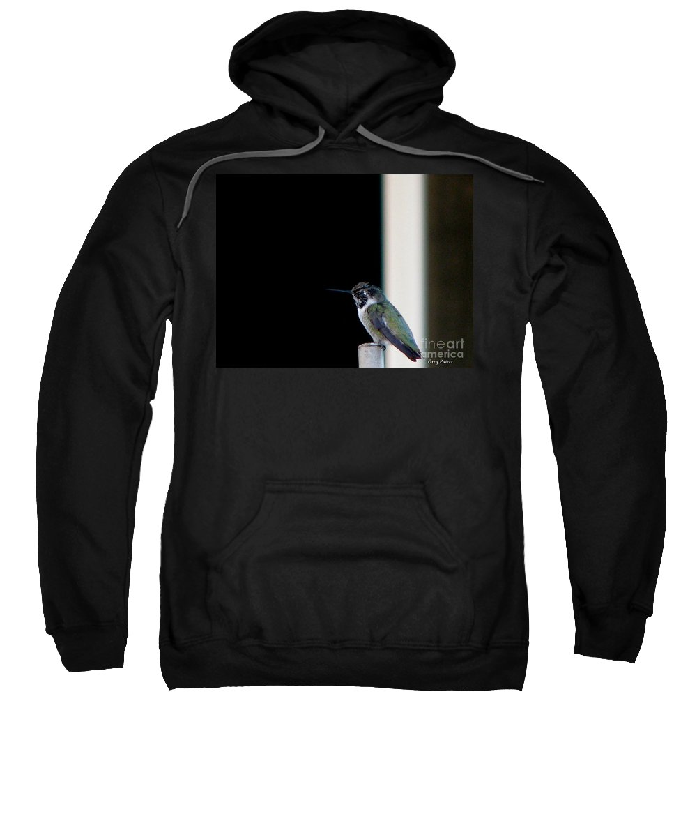 Patzer Sweatshirt featuring the photograph My Friend Stop By by Greg Patzer