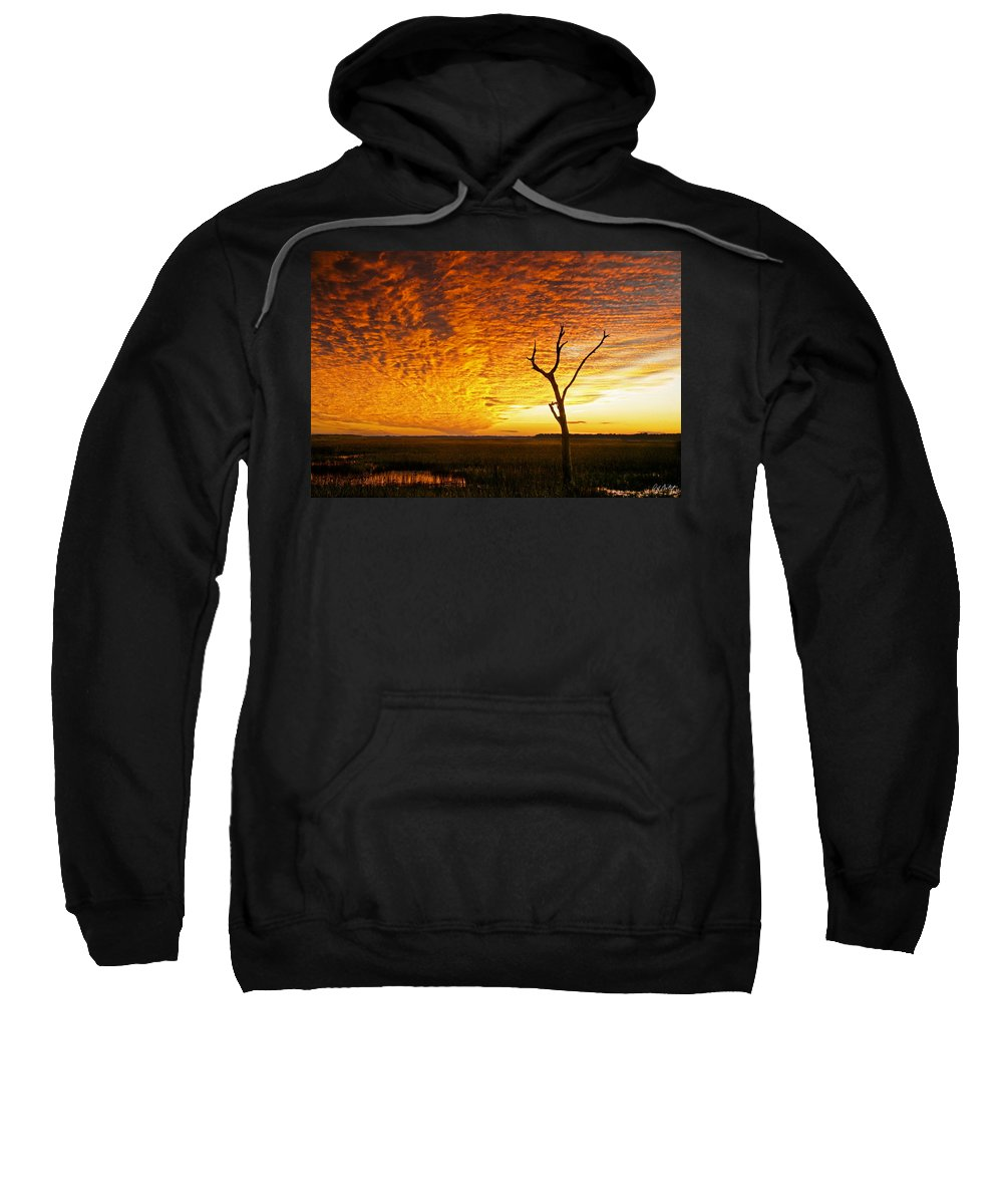Sunset Sweatshirt featuring the photograph Naked Tree by Phill Doherty