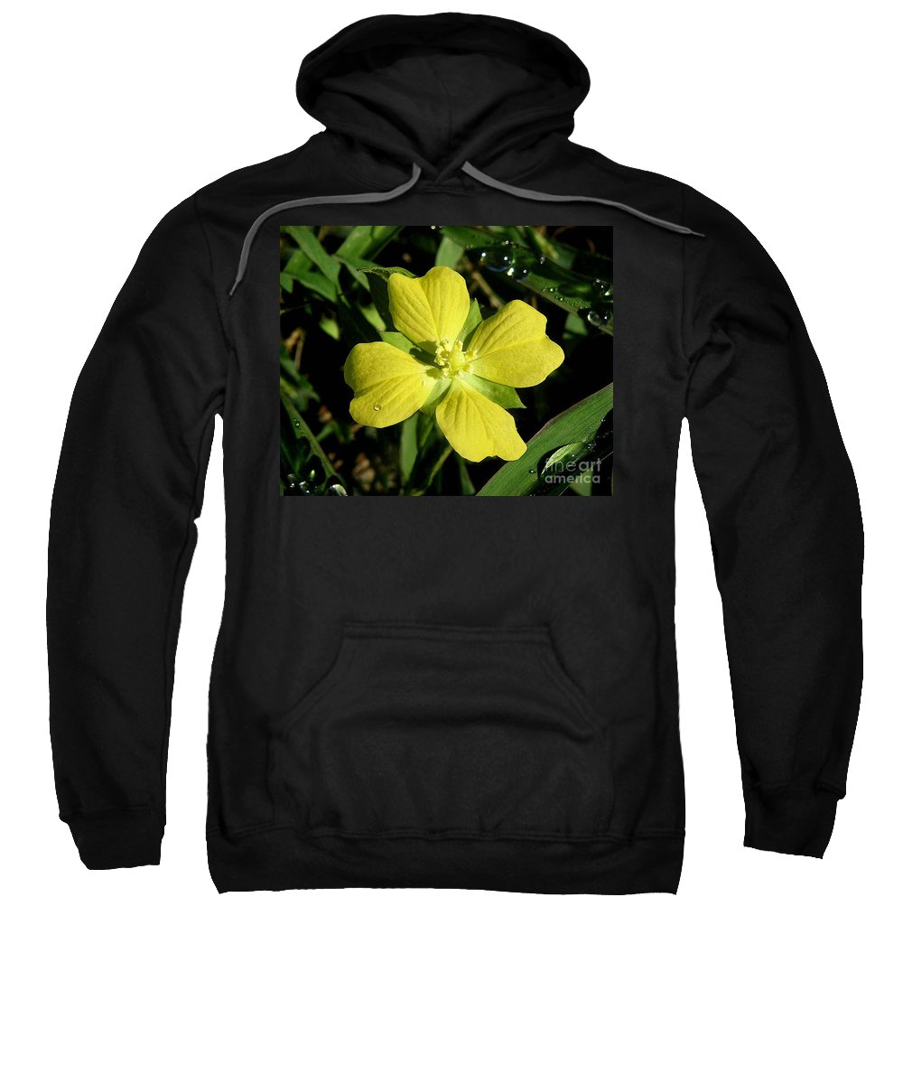 Nature Sweatshirt featuring the photograph Nature In The Wild - Kissed By The Sun by Lucyna A M Green