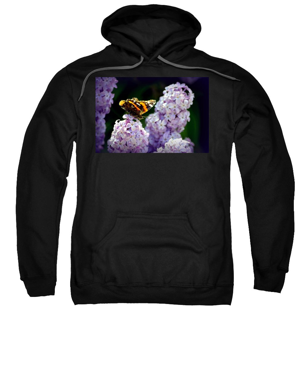 Butterfly Sweatshirt featuring the photograph Nature's Beauty by Clarice Lakota