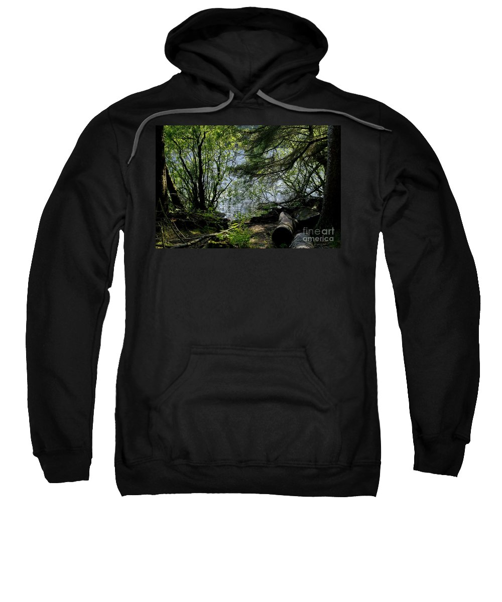 Beecraigs Sweatshirt featuring the photograph Near Water Of The Forest Lake. by Elena Perelman
