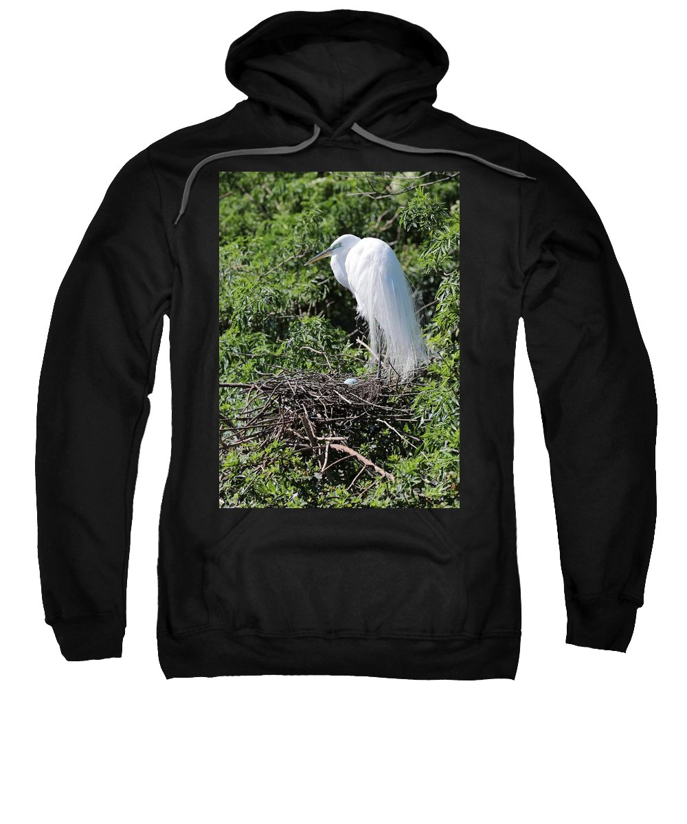 Egret Sweatshirt featuring the photograph Nesting Great Egret With Egg by Carol Groenen