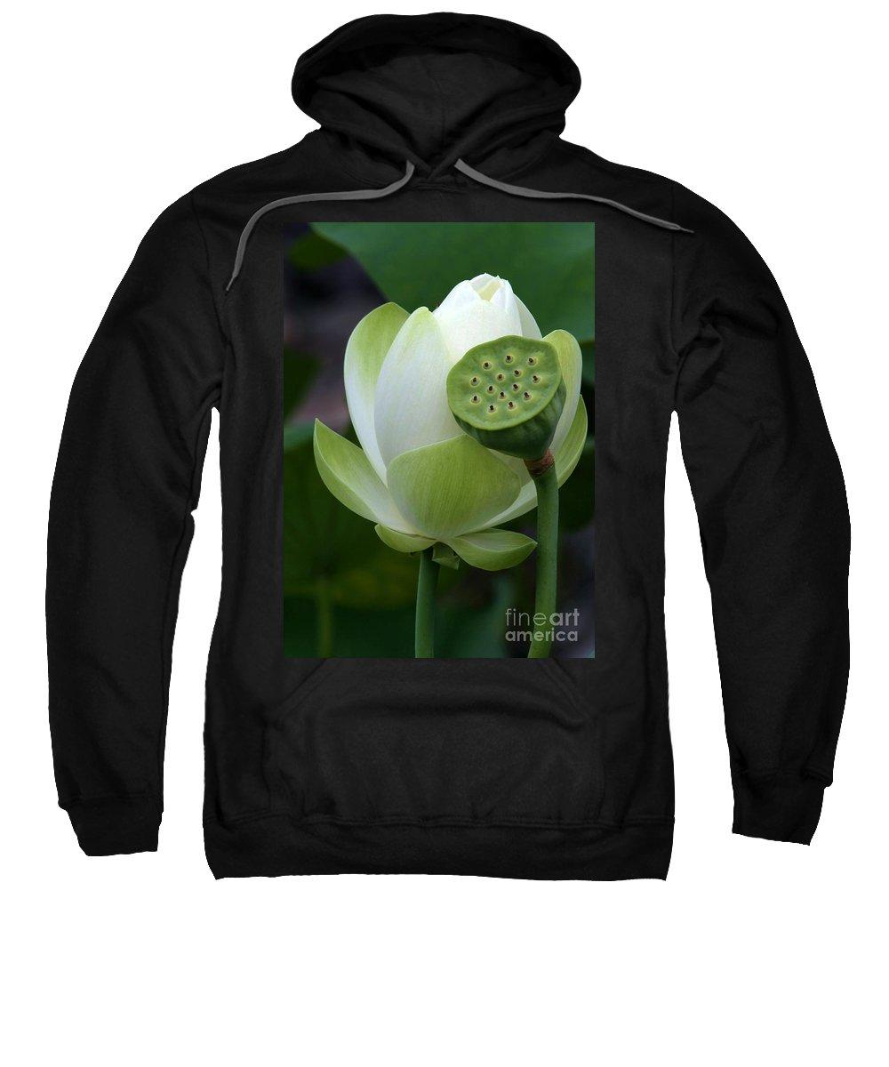 Lotus Sweatshirt featuring the photograph New Beginnings by Sabrina L Ryan
