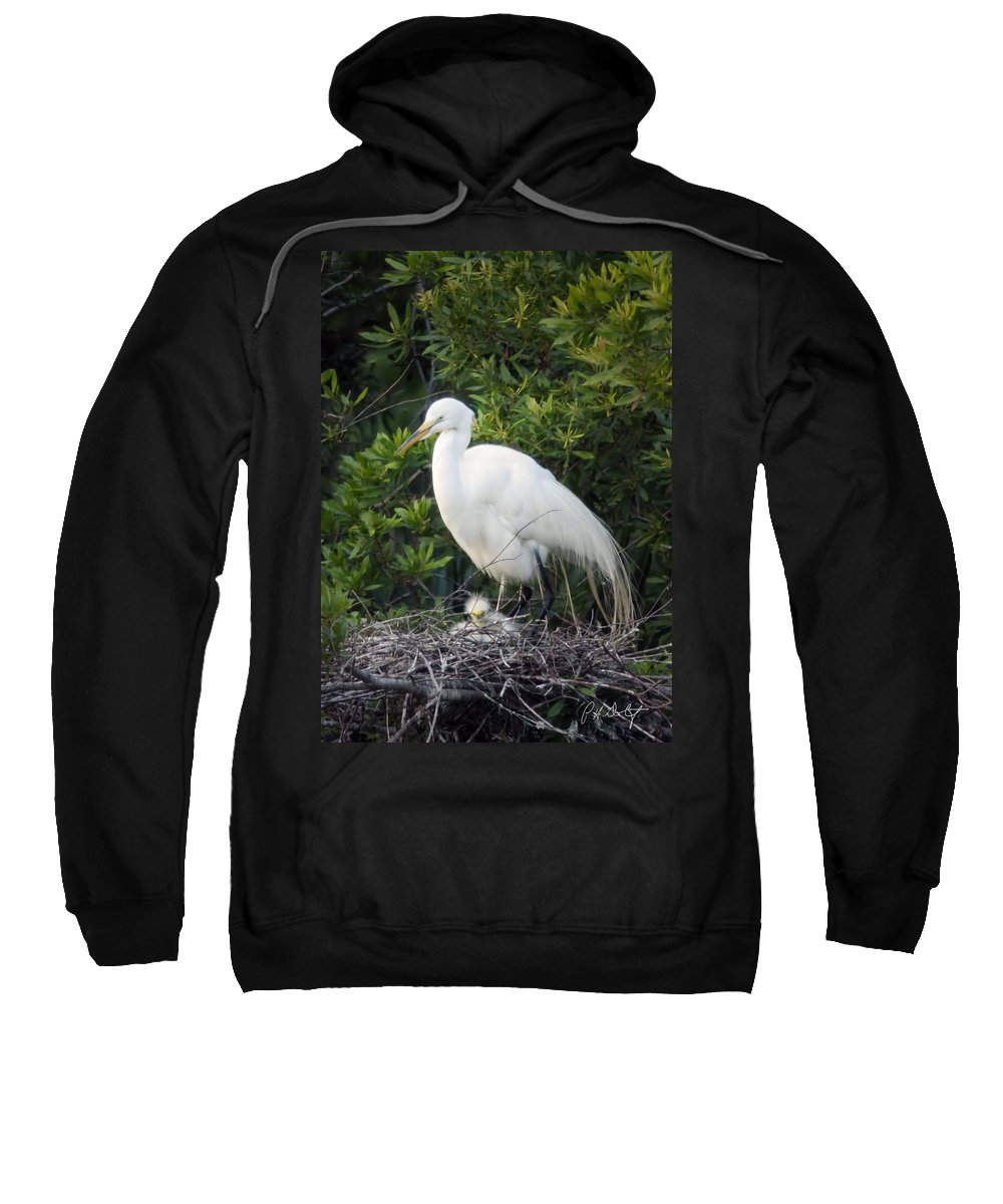 Beaufort County Sweatshirt featuring the photograph New Chick by Phill Doherty