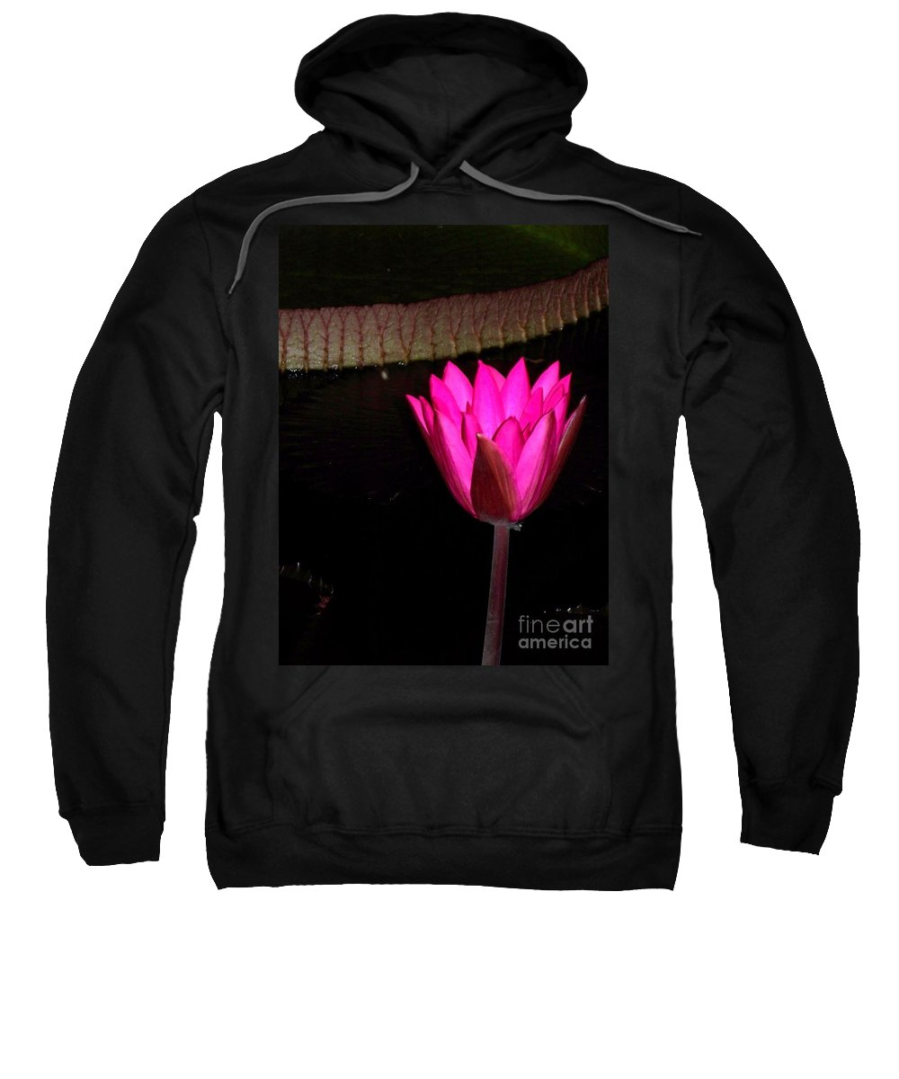 Photograph Sweatshirt featuring the photograph Night Time Lily Monet by Eric Schiabor