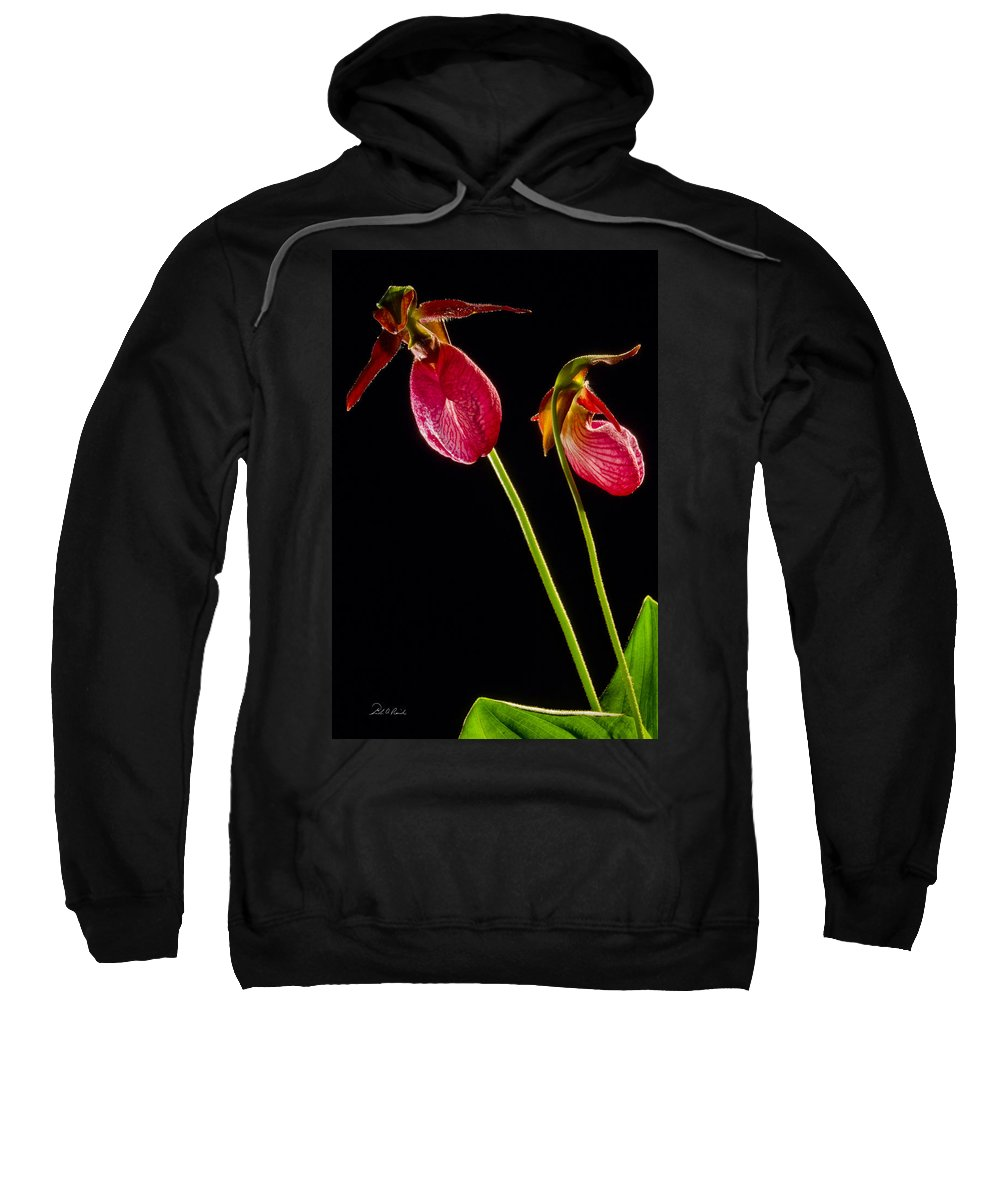 Photography Sweatshirt featuring the photograph No Lady Slipper Was Harmed by Frederic A Reinecke