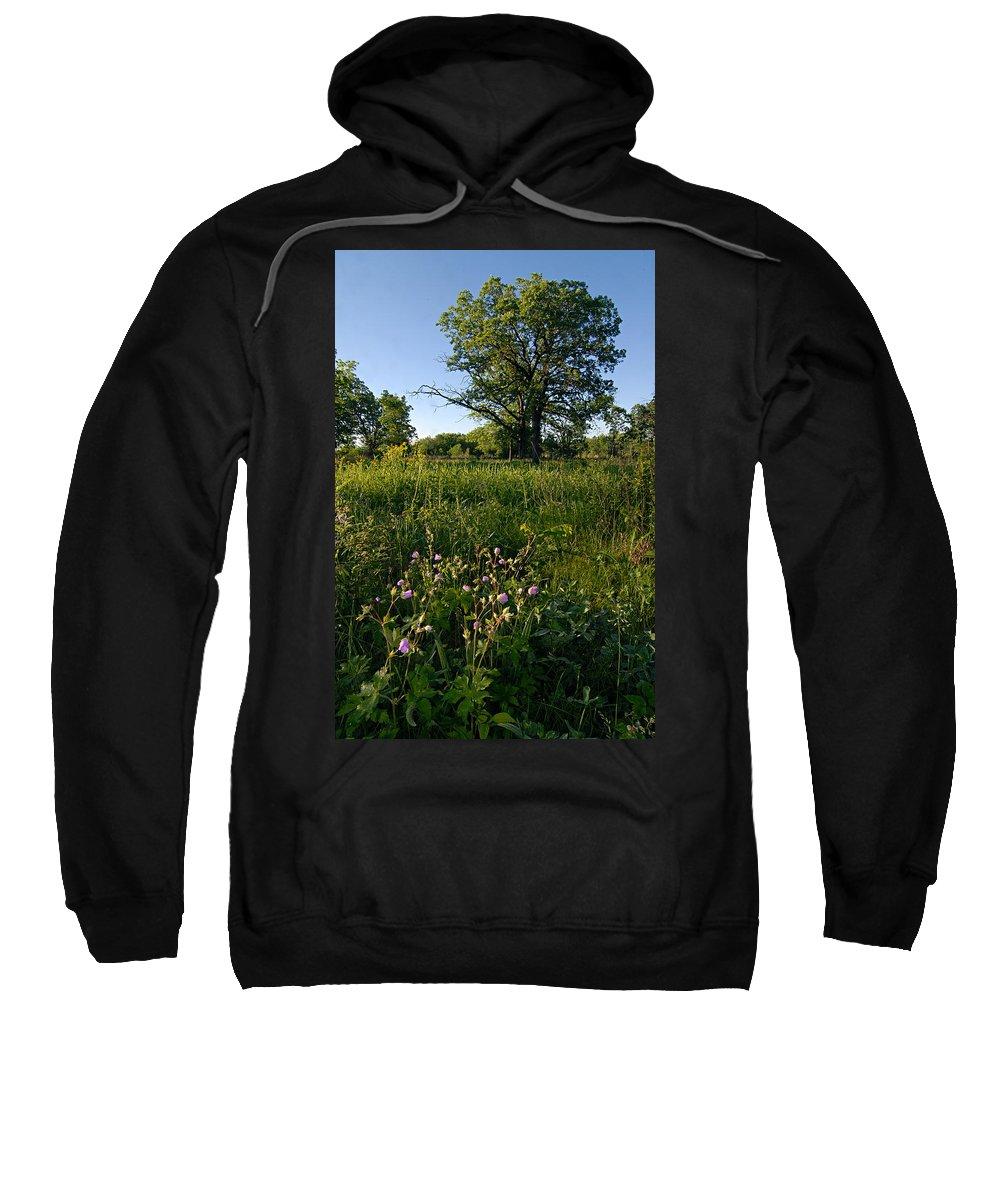 Burr Oak Tree Sweatshirt featuring the photograph Oak Savanah by Larry Ricker