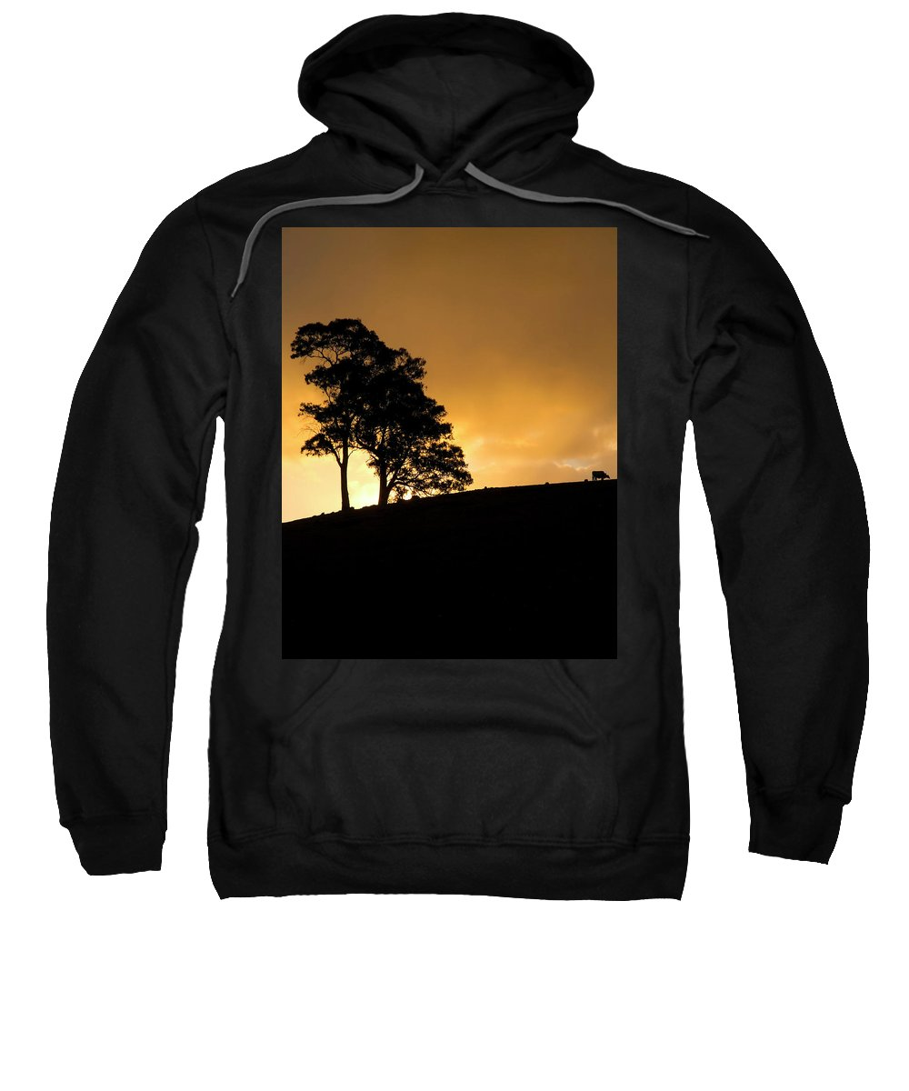 Hills Sweatshirt featuring the photograph Oblivious by Mike Dawson