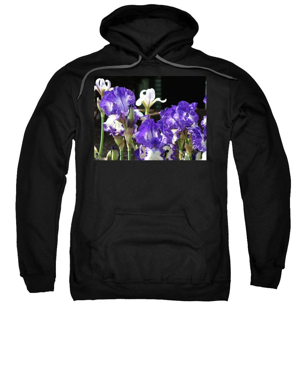Iris Sweatshirt featuring the photograph Office Art Prints Iris Flower Botanical Landscape 30 Giclee Prints Baslee Troutman by Baslee Troutman