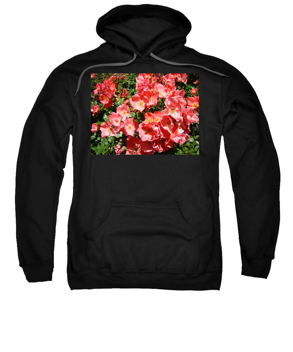 Rose Sweatshirt featuring the photograph Office Art Rose Garden Landscape Art Pink Roses Giclee Baslee Troutman by Baslee Troutman