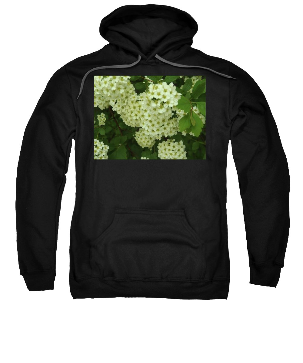Sweatshirt featuring the photograph Oh, Happy Day by Britt P