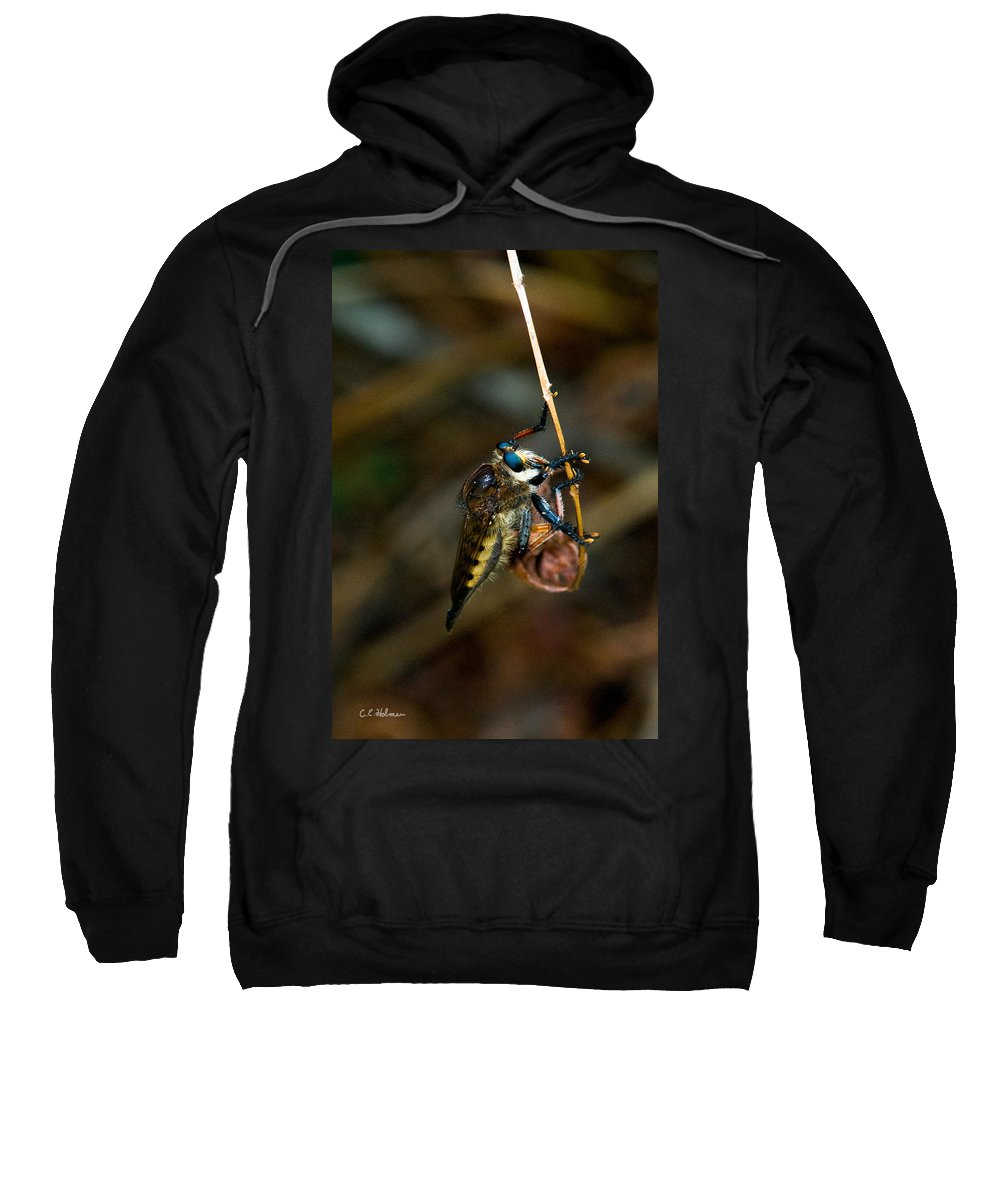 Bug Sweatshirt featuring the photograph Old Blue Eyes by Christopher Holmes