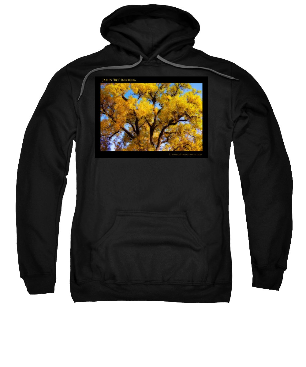 Gifts Sweatshirt featuring the photograph Old Giant Autumn Cottonwood Orton by James BO Insogna