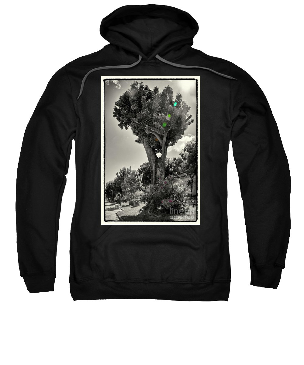 Tree Sweatshirt featuring the photograph Old Tree In Sicily by Madeline Ellis