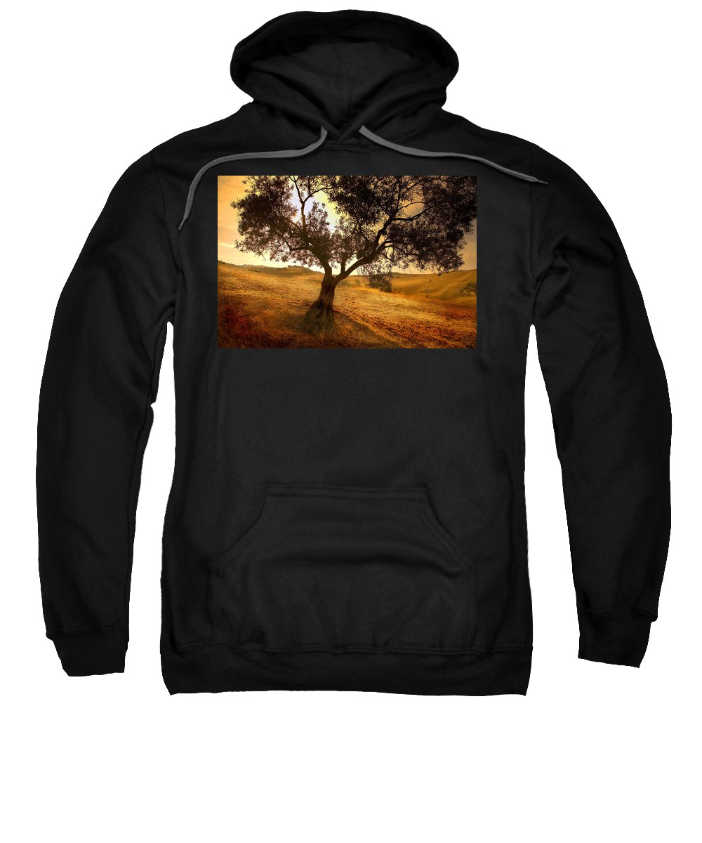 Landscape Sweatshirt featuring the photograph Olive Tree Dawn by Mal Bray
