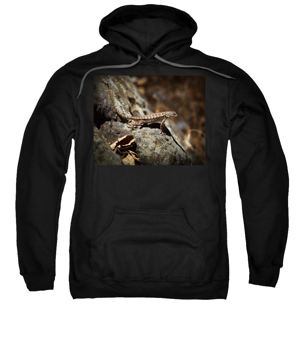 Western Fence Lizard Sweatshirt featuring the photograph On The Look Out by Kelley King