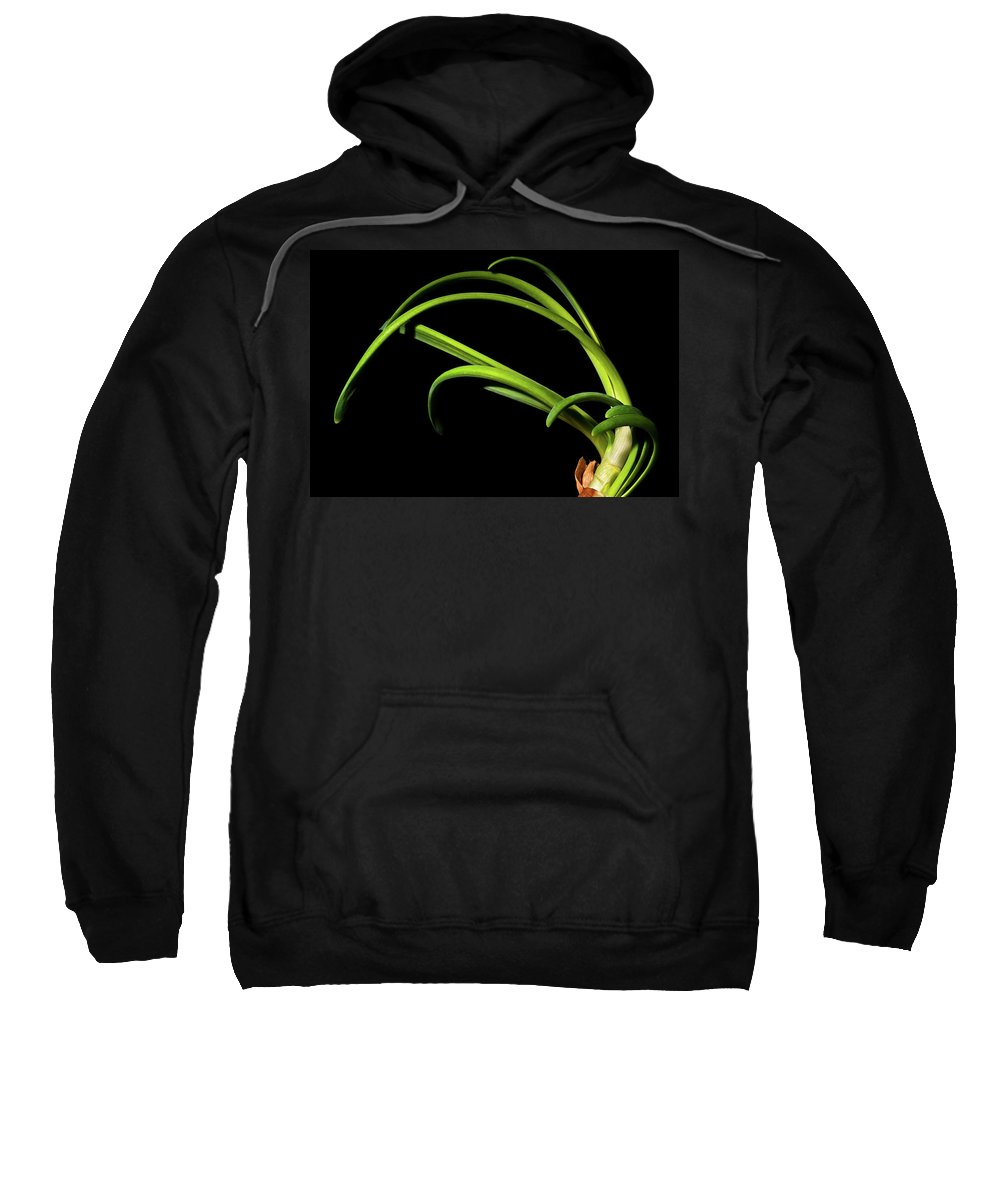 Onion Greens Sweatshirt featuring the photograph Onion Greens by Onyonet Photo Studios