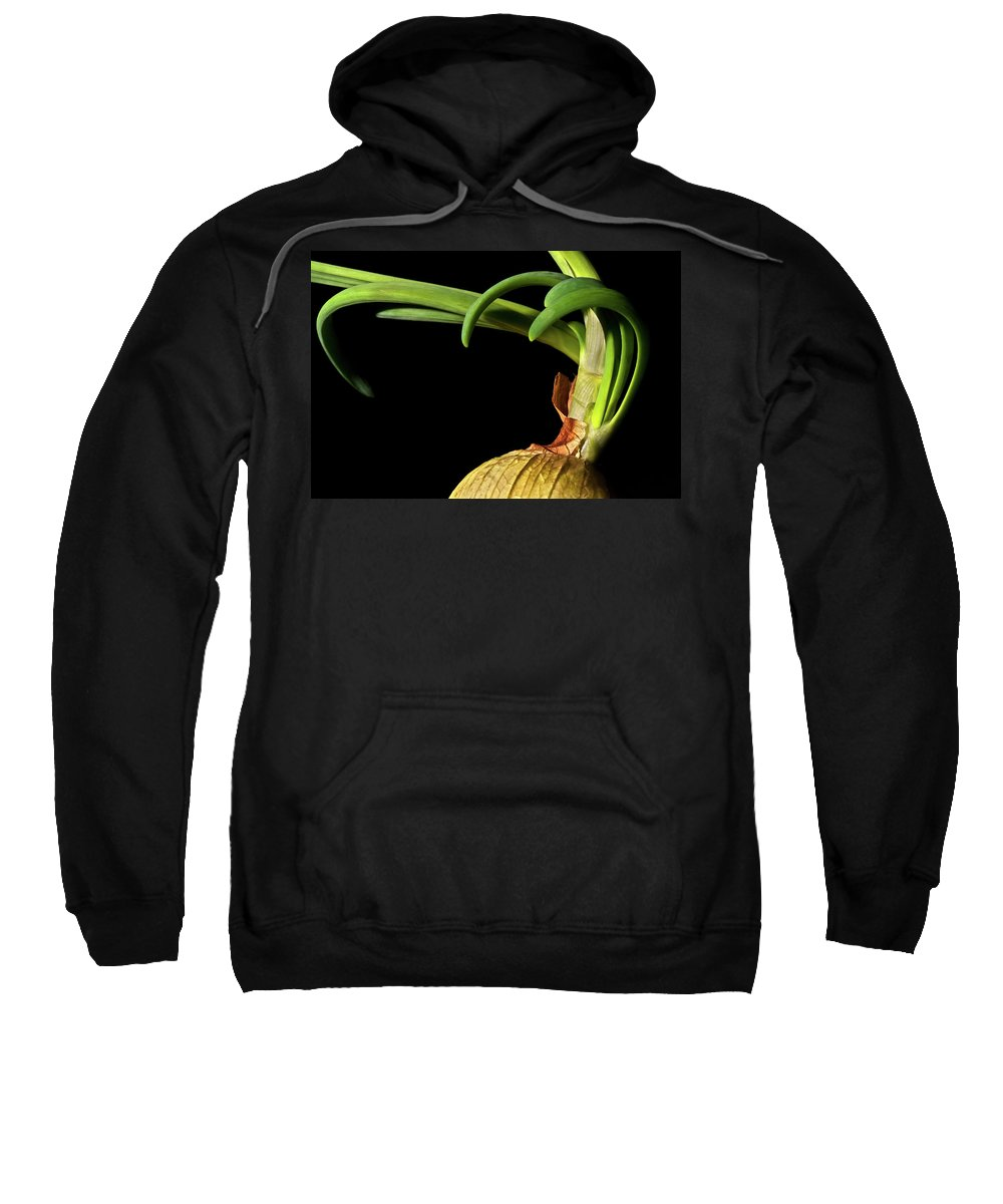 Onion Greens Sweatshirt featuring the photograph Onion Sprouting by Onyonet Photo Studios