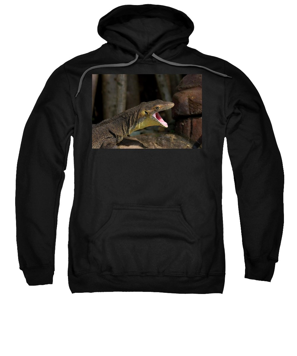 Water Monitor Sweatshirt featuring the photograph Open Wide by Mike Dawson