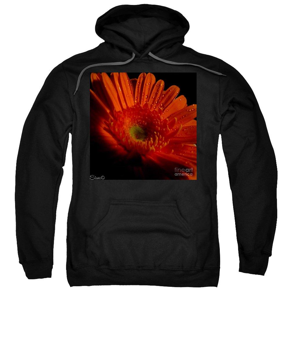 Macro Sweatshirt featuring the photograph Orange Gerbera by September Stone