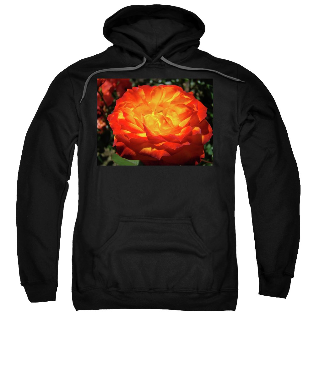 Rose Sweatshirt featuring the photograph Orange Red Rose Flower Art Prints Giclee Baslee Troutman by Baslee Troutman