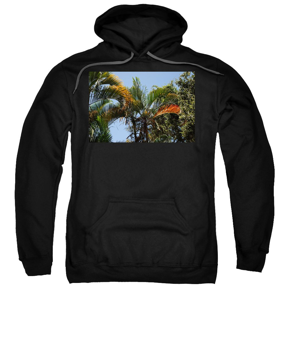 Palms Sweatshirt featuring the photograph Orange Trees by Rob Hans