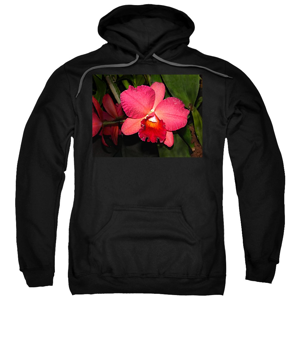 Digital Painting And Photography Sweatshirt featuring the photograph Orchid by Steve Karol