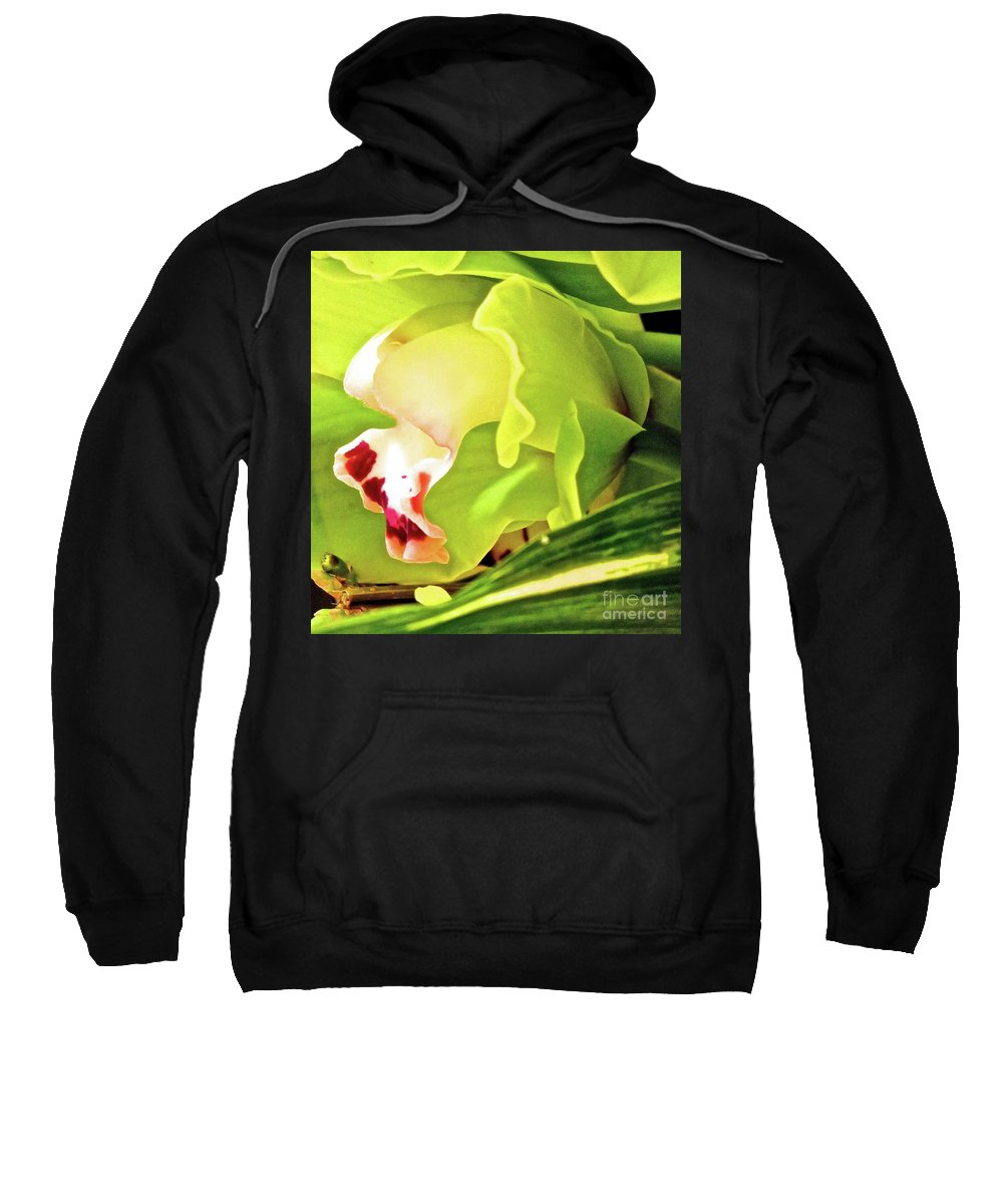 Flower Sweatshirt featuring the photograph Orchid With Yellow And Green 2 by Ken Lerner