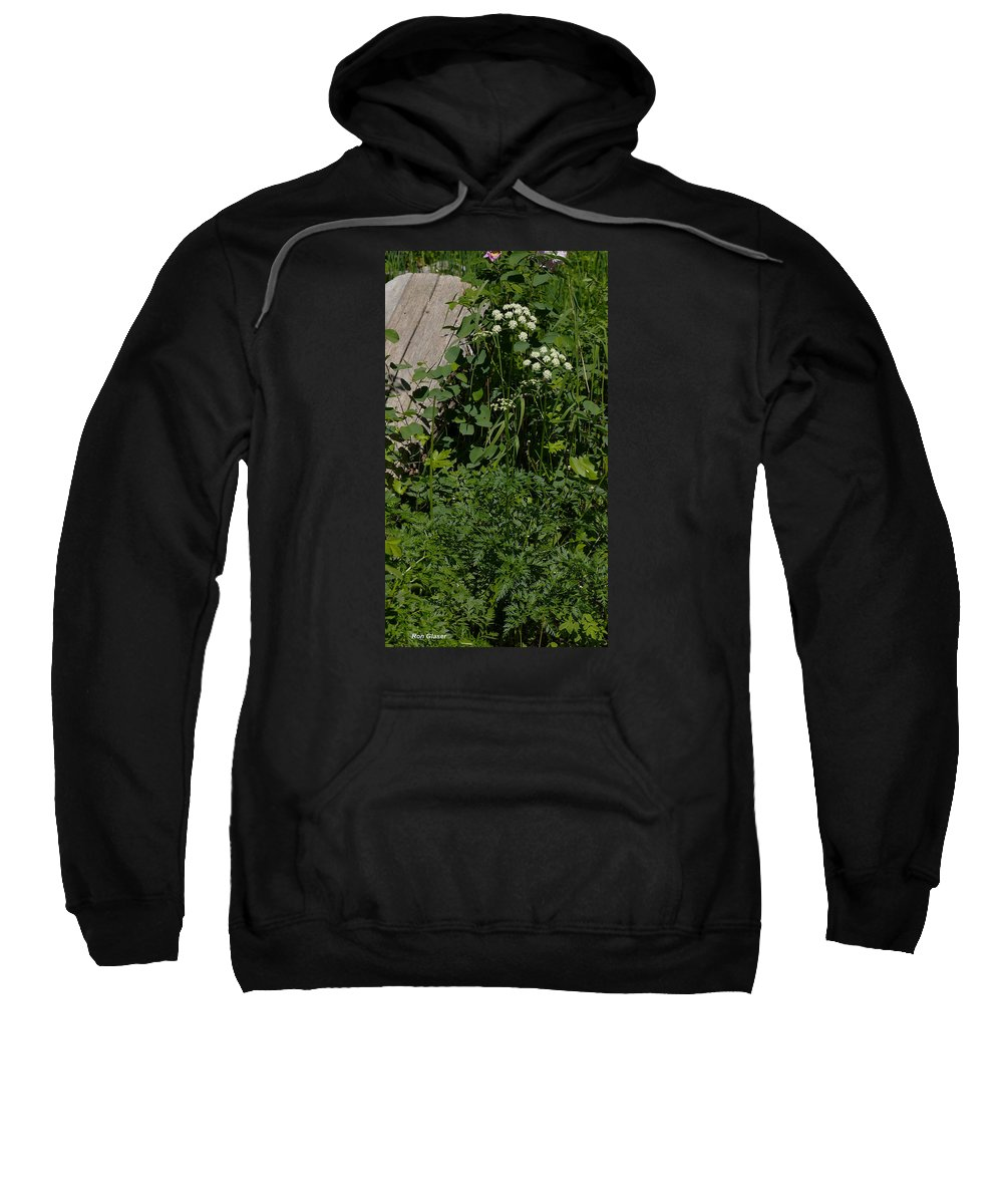 Ron Glaser Sweatshirt featuring the photograph Osha And Valarian by Ron Glaser