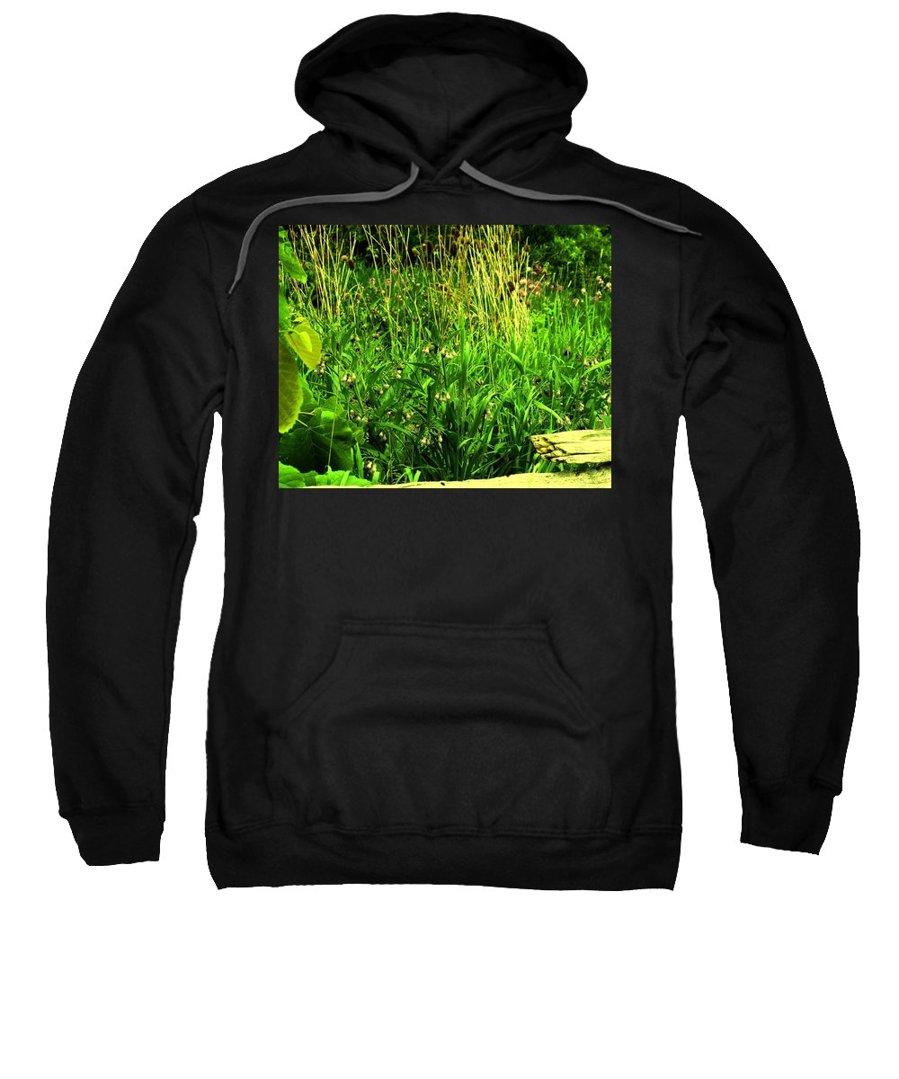 Fence Sweatshirt featuring the photograph Over The Fence by Ian MacDonald
