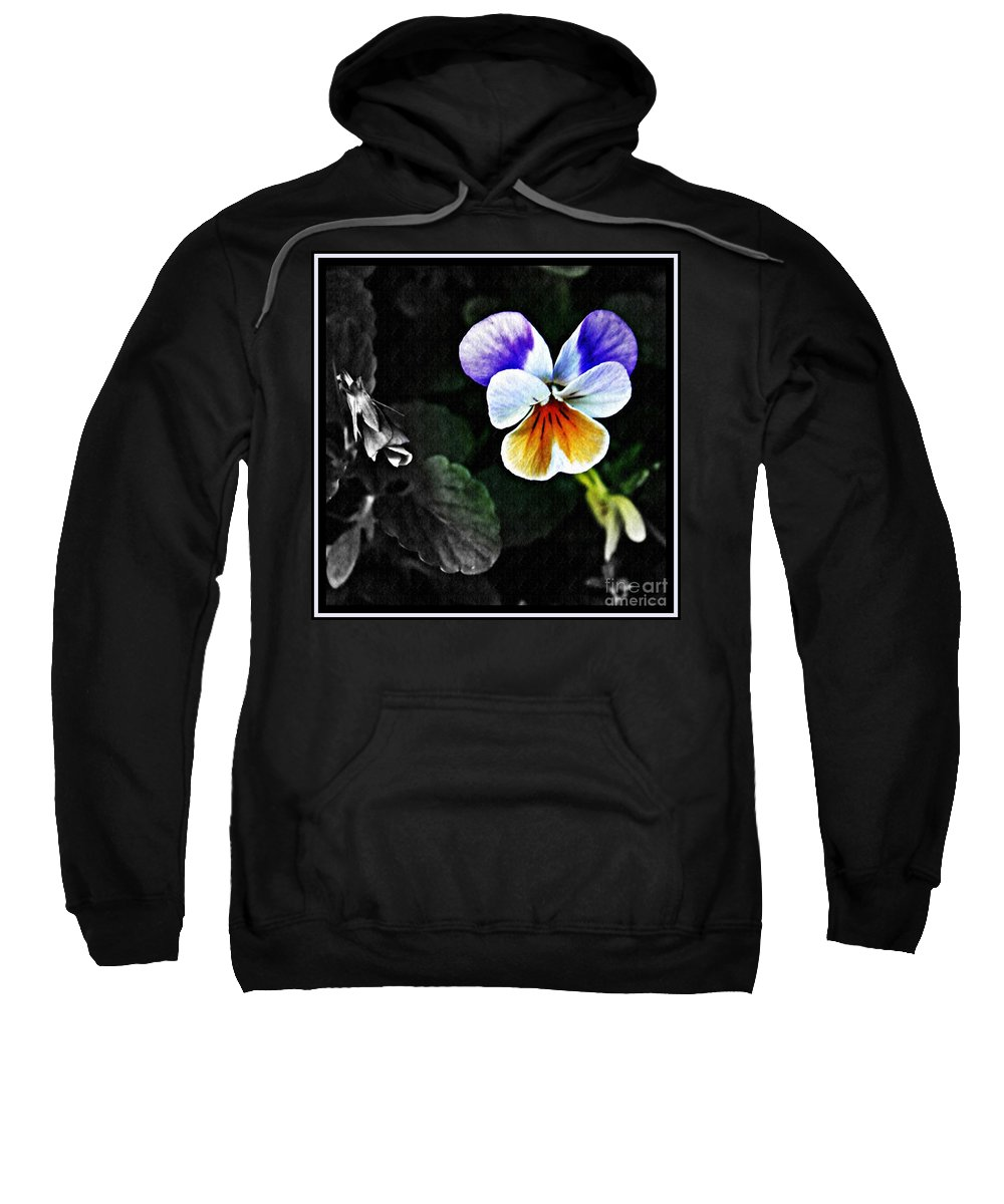 Pansy Sweatshirt featuring the photograph Pansy Statement by Sarah Loft