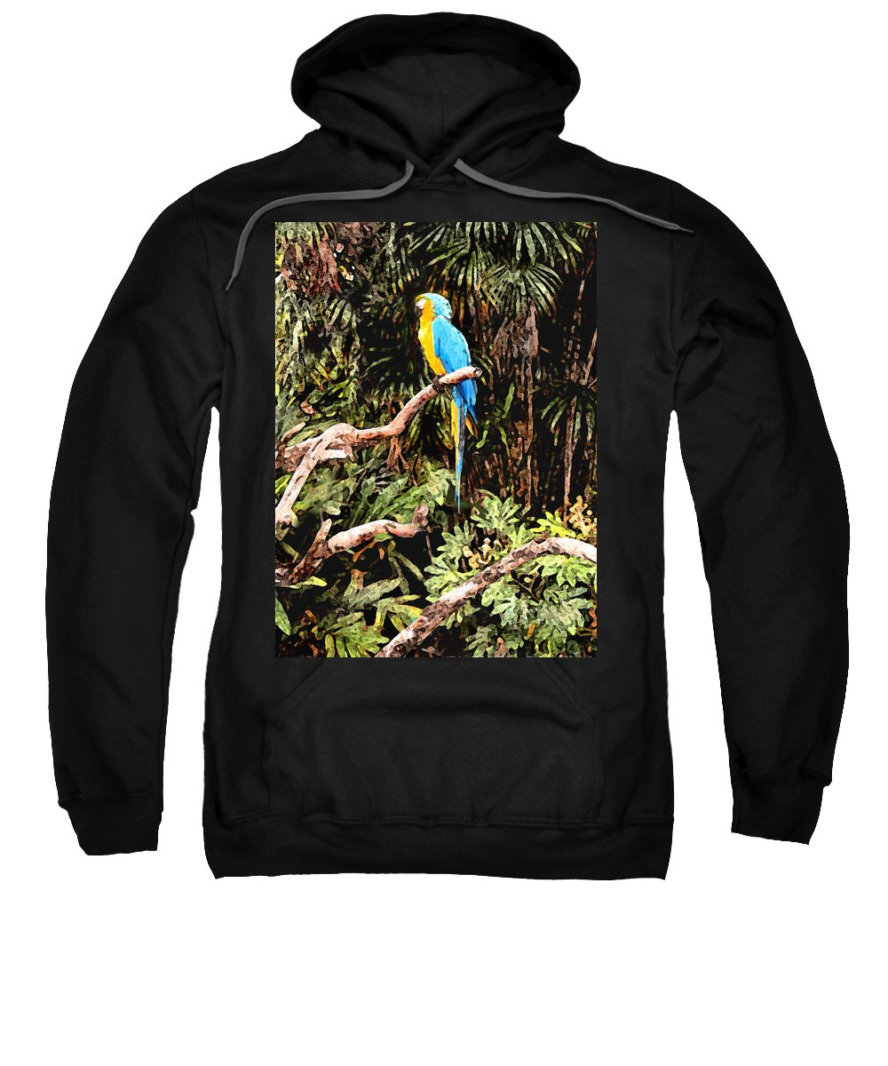 Parrot Sweatshirt featuring the photograph Parrot by Steve Karol