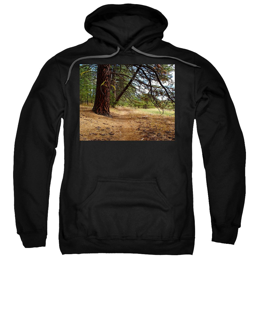 Nature Sweatshirt featuring the photograph Path To Enlightenment 1 by Ben Upham III