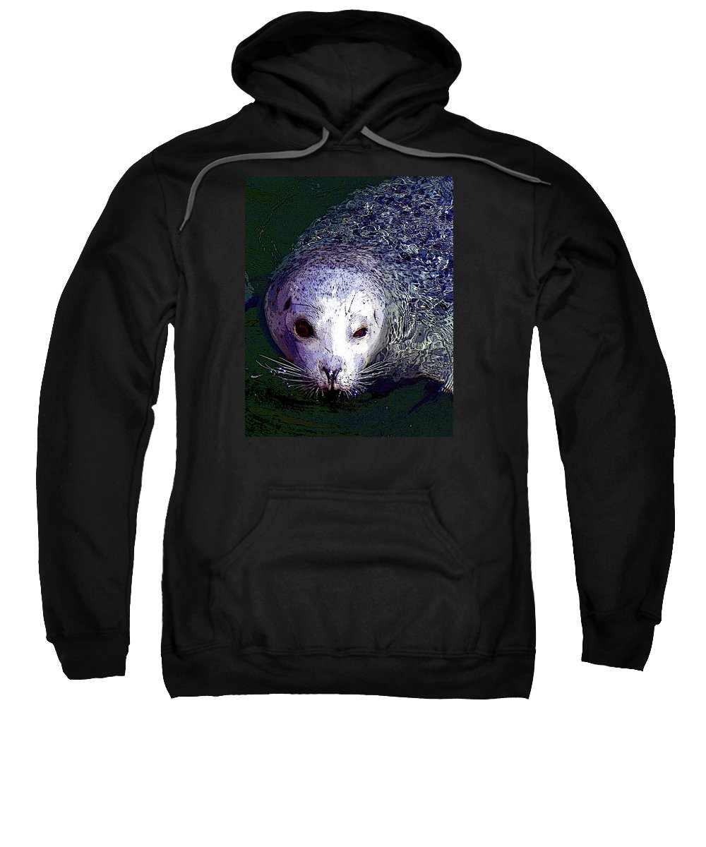 Head Sweatshirt featuring the photograph Patterned Seal by Michele Broadfoot