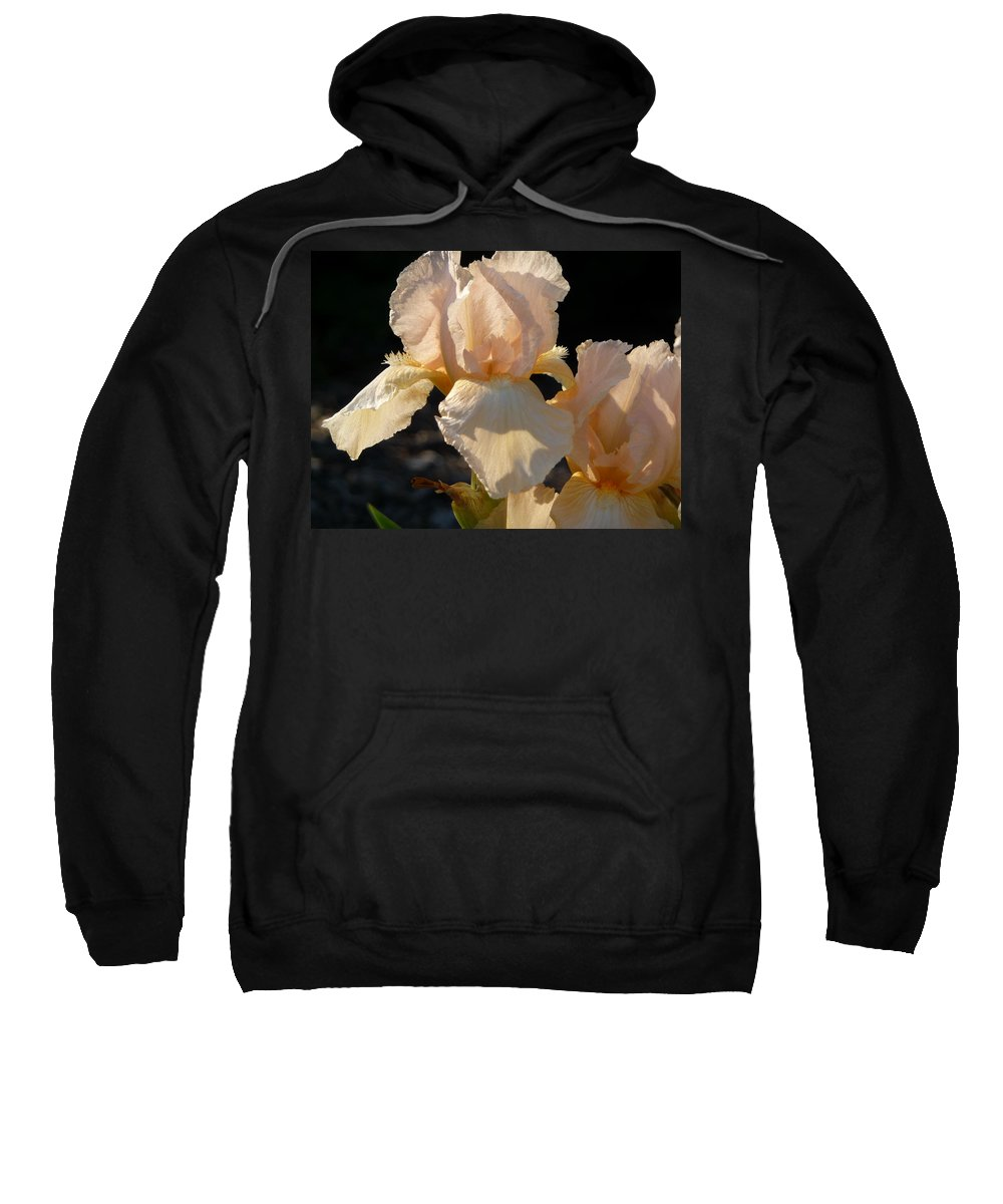 Flower. Iris Sweatshirt featuring the photograph Peach Bearded Iris by Ruth Kamenev