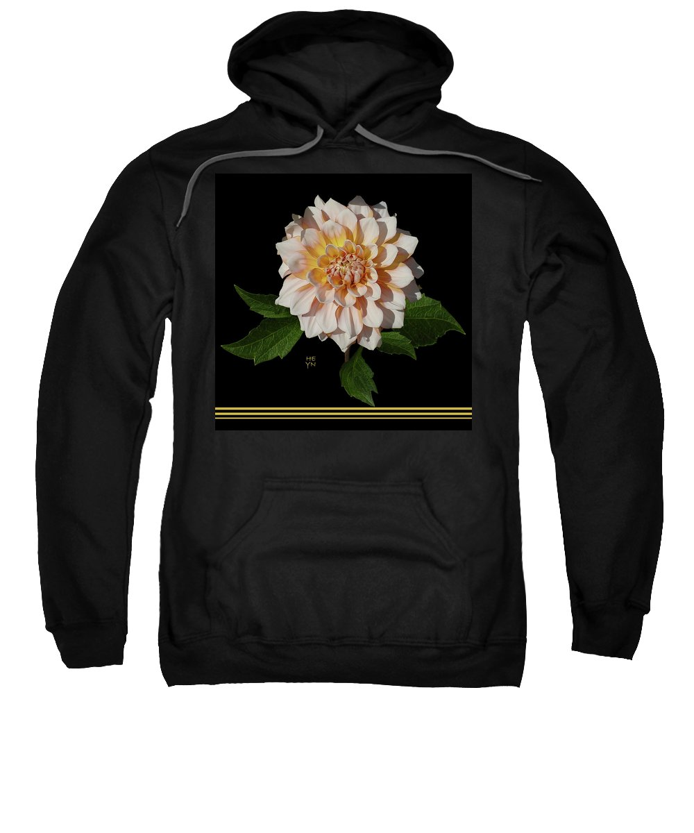 Sunlight Sweatshirt featuring the photograph Peach-n-yellow Dahlia Cutout by Shirley Heyn