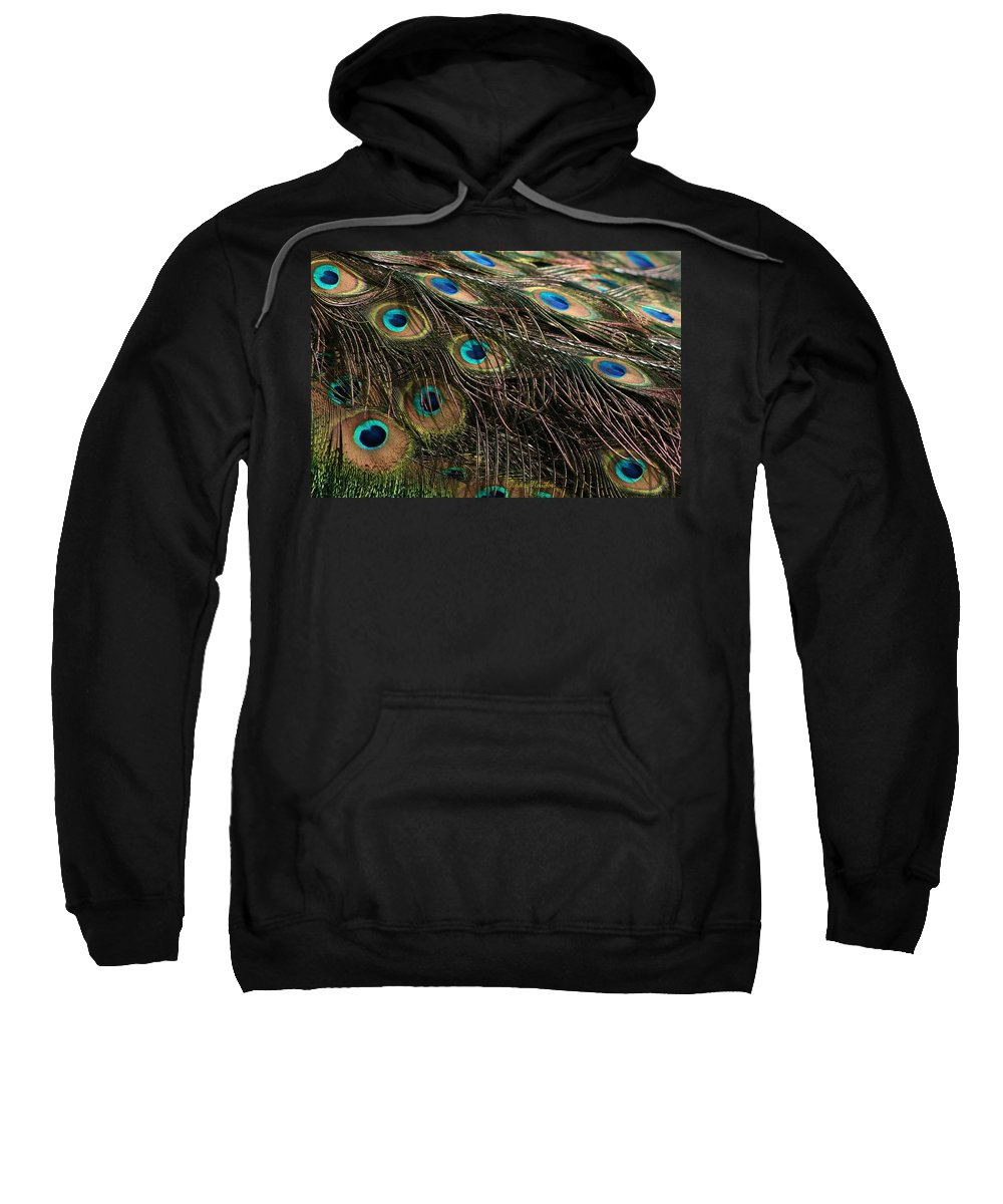 Peacock Sweatshirt featuring the photograph Peacock Feathers by Tina Meador