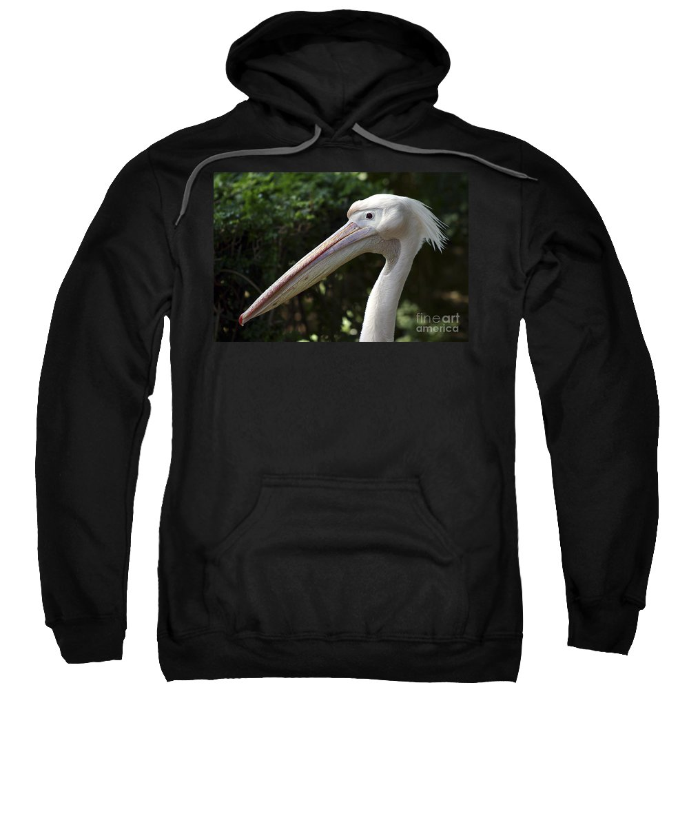 Close Up Sweatshirt featuring the photograph Pelican by Danny Yanai