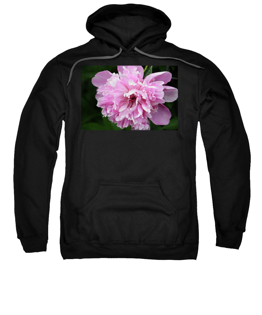 Flower Sweatshirt featuring the photograph Peony Perfection by Angelina Vick