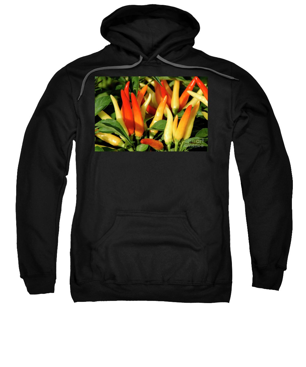Flowers Sweatshirt featuring the digital art Peppers by Sobano S