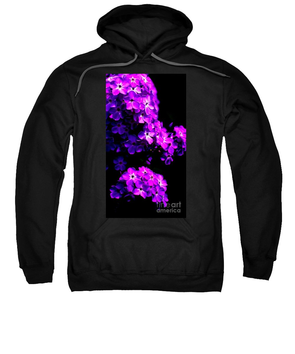 Digital Photograph Sweatshirt featuring the photograph Phlox 1 by David Lane