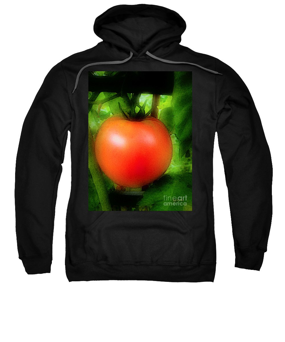 Garden Sweatshirt featuring the painting Picture Perfect by RC DeWinter