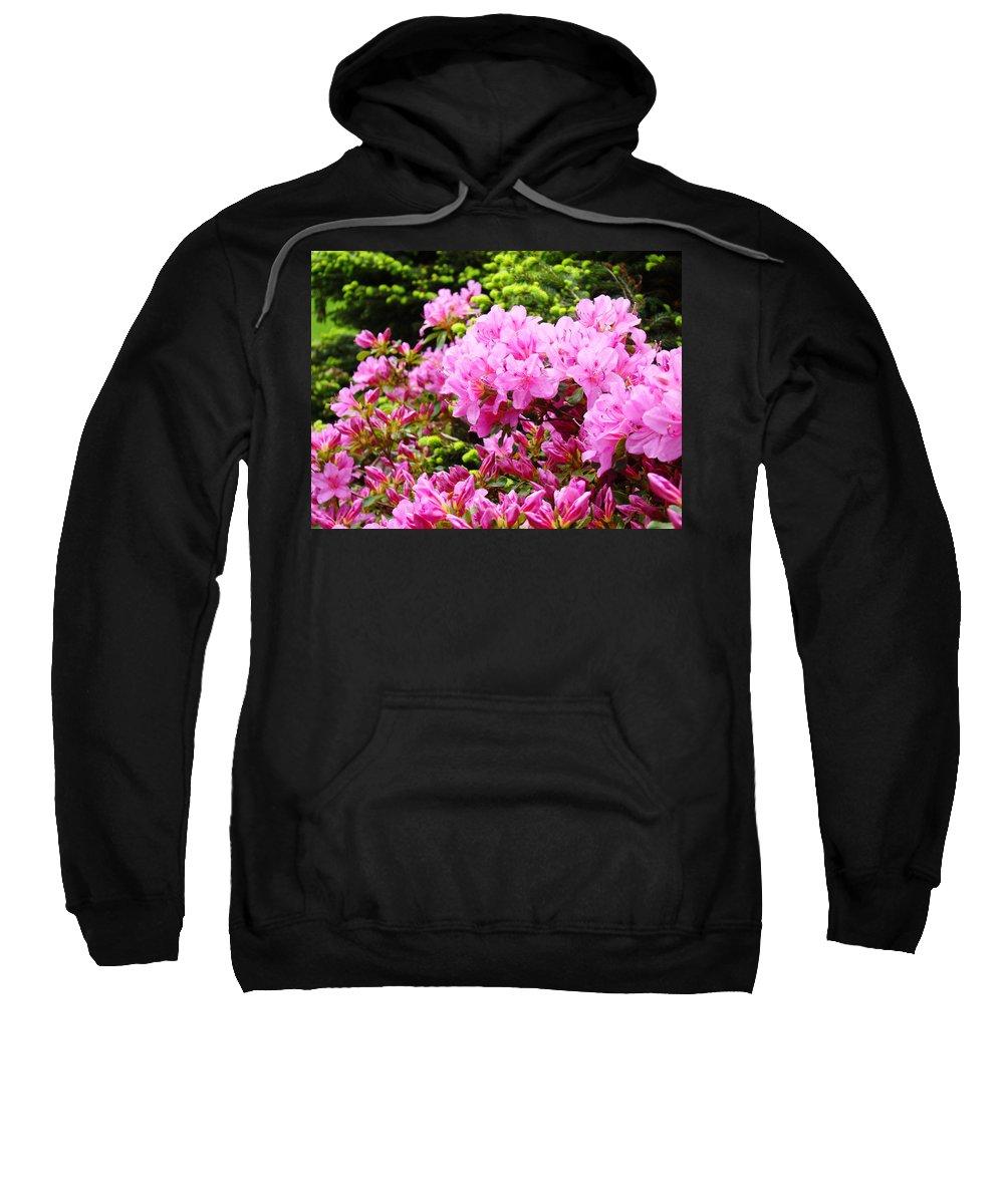 �azaleas Artwork� Sweatshirt featuring the photograph Pink Azalea Flowers Landscape 11 Art Prints Canvas Artwork Framed Art Cards by Baslee Troutman