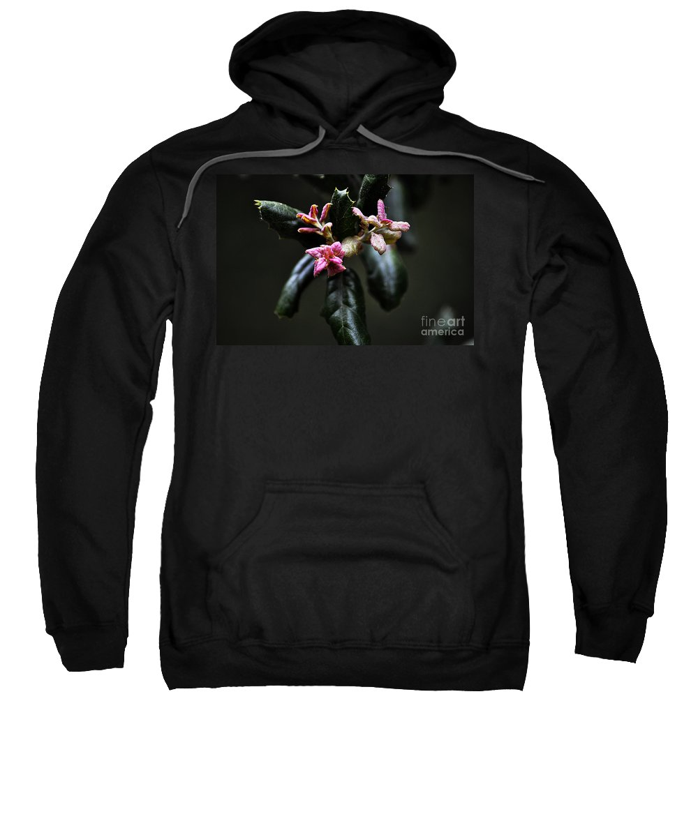 Clay Sweatshirt featuring the photograph Pink Bud by Clayton Bruster