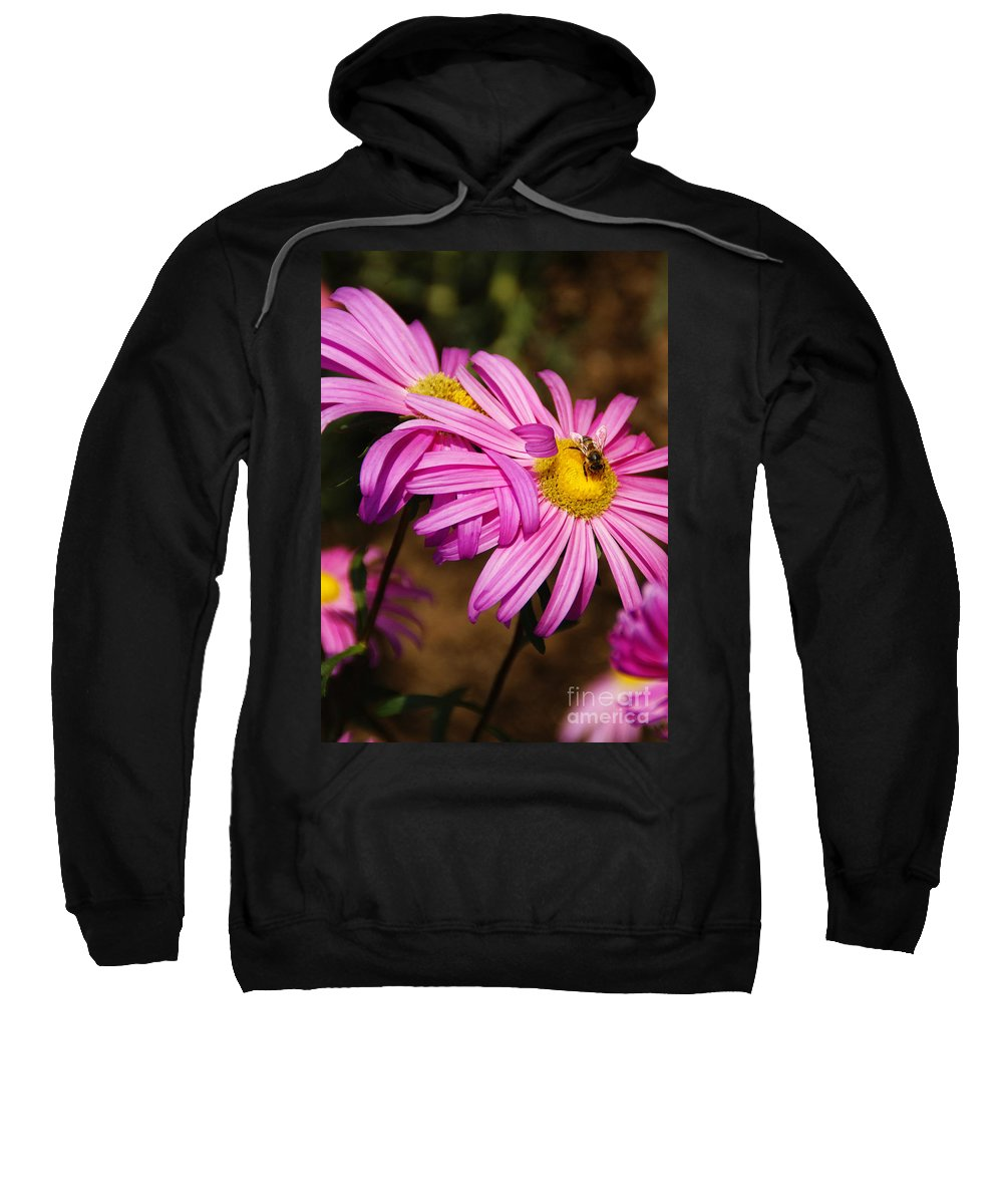 Pink Sweatshirt featuring the photograph Pink Embrace by Linda Shafer