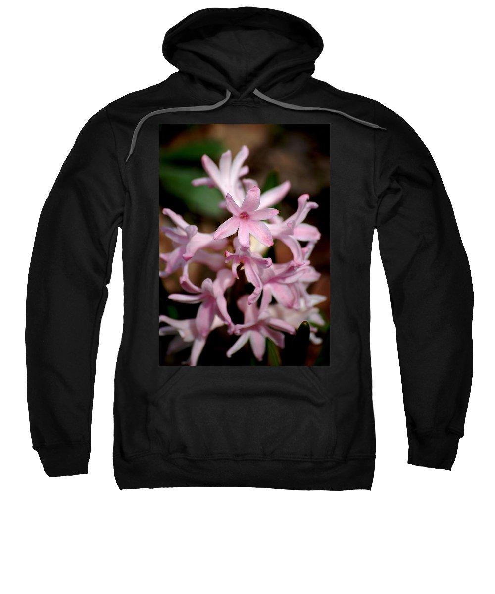 Digital Photography Sweatshirt featuring the photograph Pink Hyacinth by David Lane
